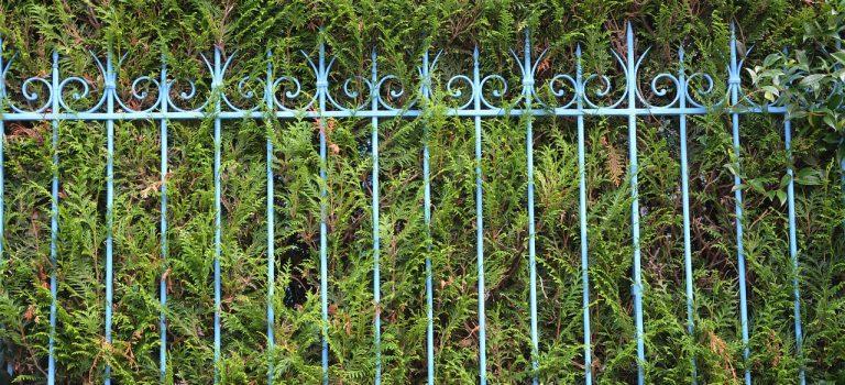 Poser une clôture : quelles sont les différentes solutions ?